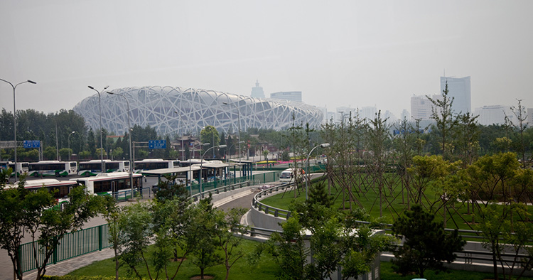 BeijingNest